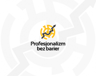 Professionalism without borders