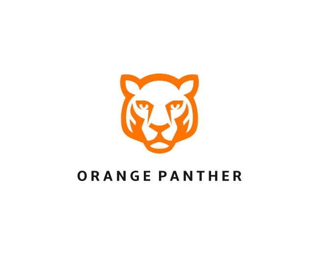 Orange Panther Accessories