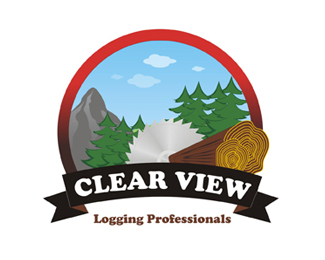Clear View Logging