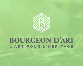 Bourgeon D'ari Logo