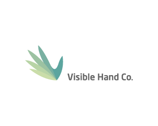 Visible Hand Co.