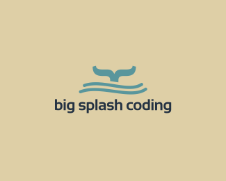 Big Splash Coding {