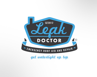 Leak Doctor option 2