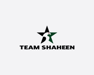Team Shaheen