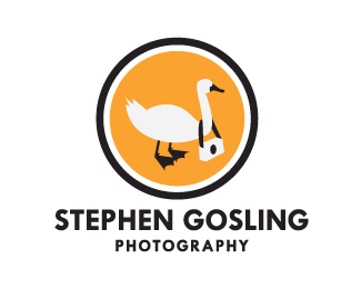 Stephen Gosling Photography