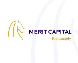 Merit Capital logo
