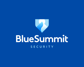 Blue Summit Security