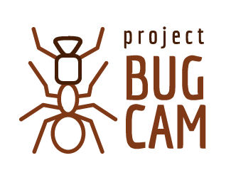 Project Bug Cam