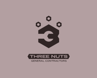 Three Nuts General Contractors v.1