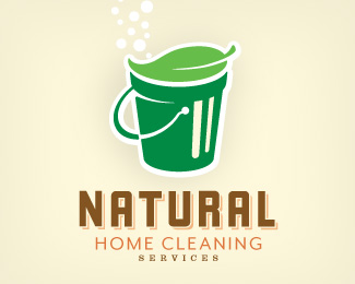 Natural Home Cleaning Services