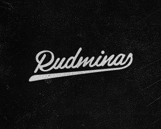 Rudminas - the programer
