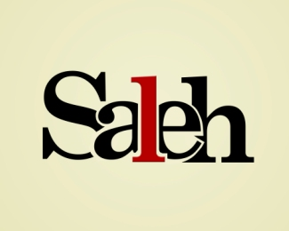 Saleh Designs
