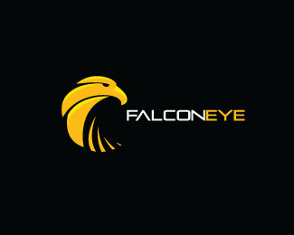 Falcon Eye Solutions