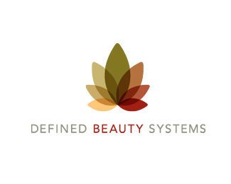 Defined Beauty Systems