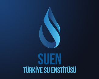 SUEN Water Institute