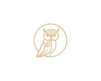 Celtic Owl Logo