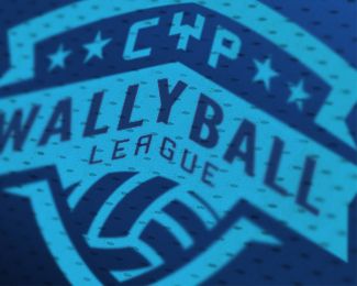 Wallyball league logo