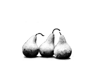 3 PEARS - hand drawn - SALE!