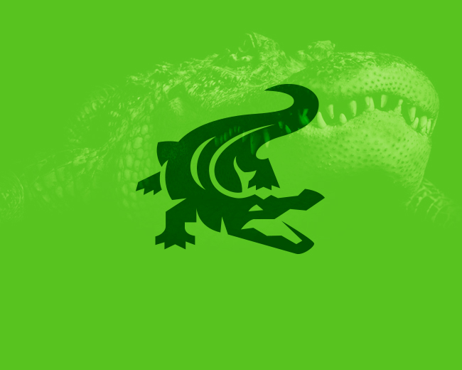 Crocodile / Alligator