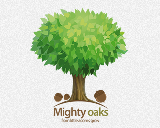 Mighty Oaks from little acorns grow