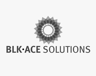 Blk Ace Solutions