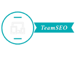 TeamSEO - SEO Company in Ahmedabad, Web Design Dev