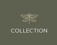 Butterflies_logotype_collection