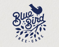 BlueBird Tree Care