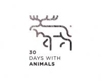 《60+国外logo设计灵感参考》