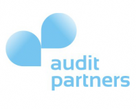 audit partners