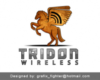 Tridon Wireless