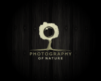 Photography of nature