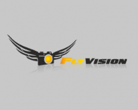 Fly vision
