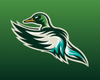 Quad City Mallards 3