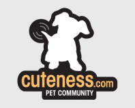 Cuteness Pet Community