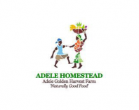 ADELE HOMESTEAD