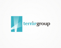 Ternig Group