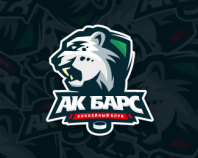 AK Bars (Snow Leopard)
