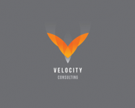 Velocity Consulting