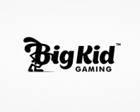 Big Kid Gaming