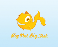 Big Net Big Fish